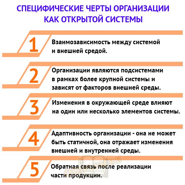 черты организации как открытой системы