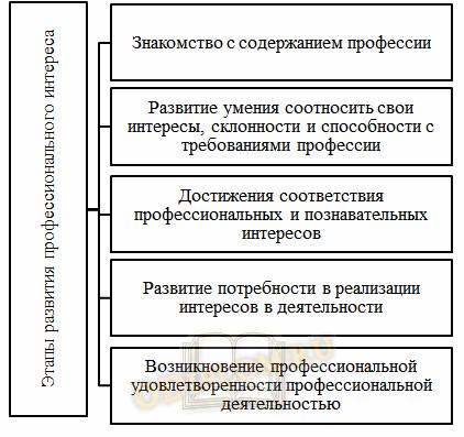Этапы развития профессионального интереса
