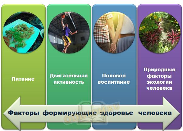 Факторы формирующие здоровье человека