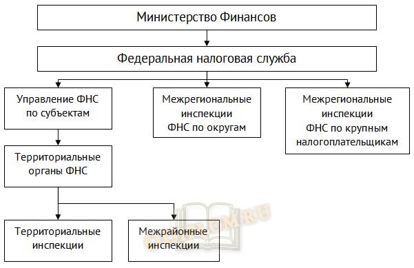 Структура налоговых органов