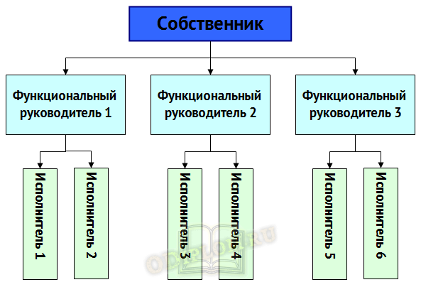 Функциональная структура управления холдинга