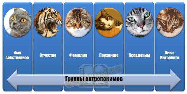 Группы антропонимов