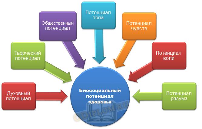 Компоненты биосоциального потенциала жизнедеятельности человека