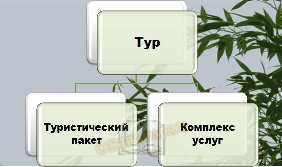 Общая структура тура