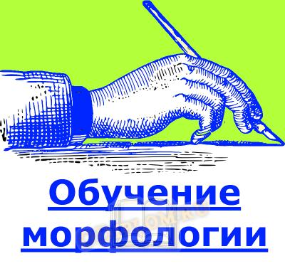 Обучение морфологии
