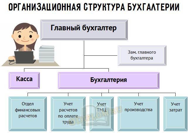 организационная структура бухгалтерии