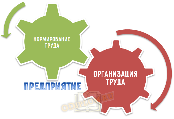 организация и нормирование труда