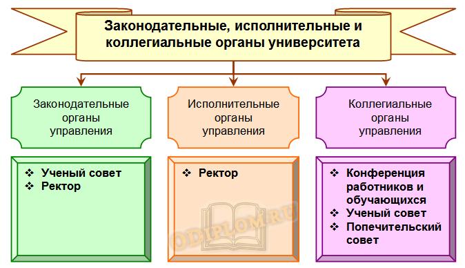органы управления университета