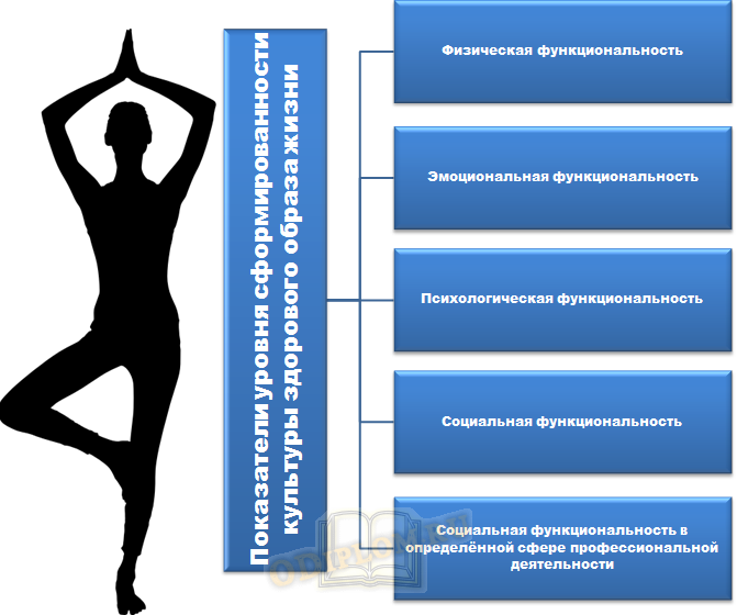 Основные показатели уровня сформированности культуры здорового образа жизни