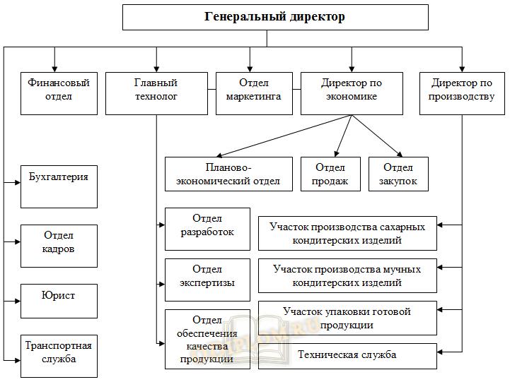 Пример организационной структуры предприятия матричного типа