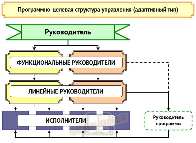 программно целевая структура управления