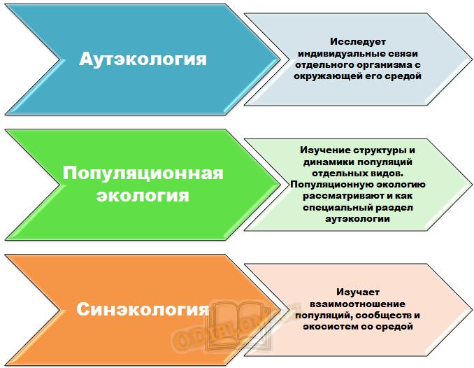 Разделы экологии