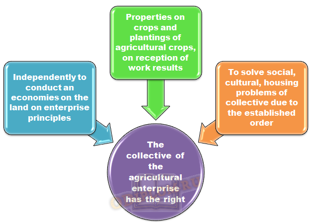 rights of agricuktural collectives