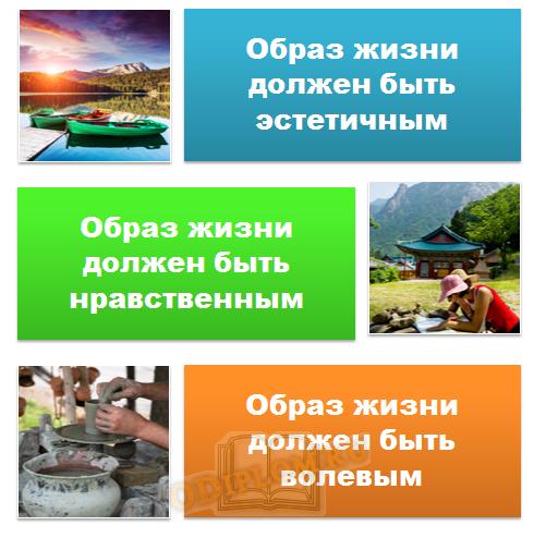 Социальные принципы здорового образа жизни