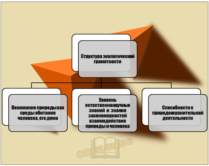 Структура экологической грамотности