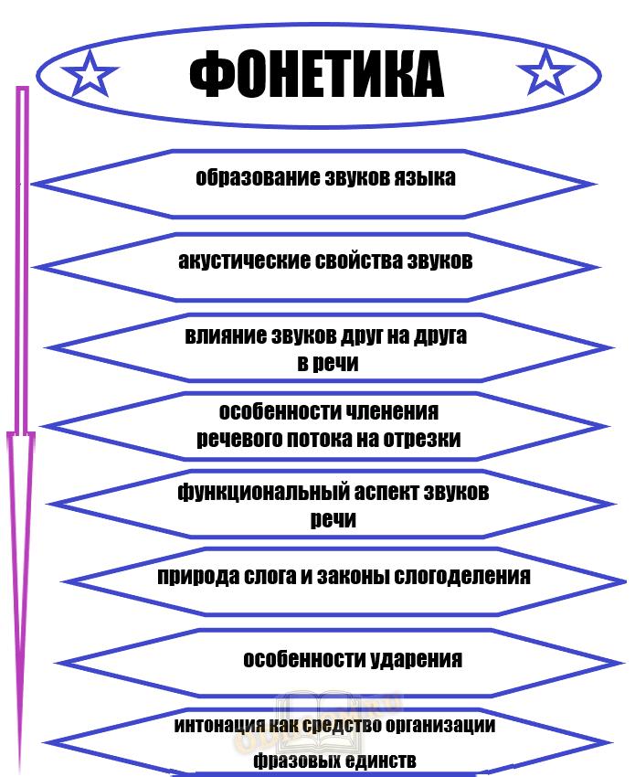 Структура фонетики как научной дисциплины