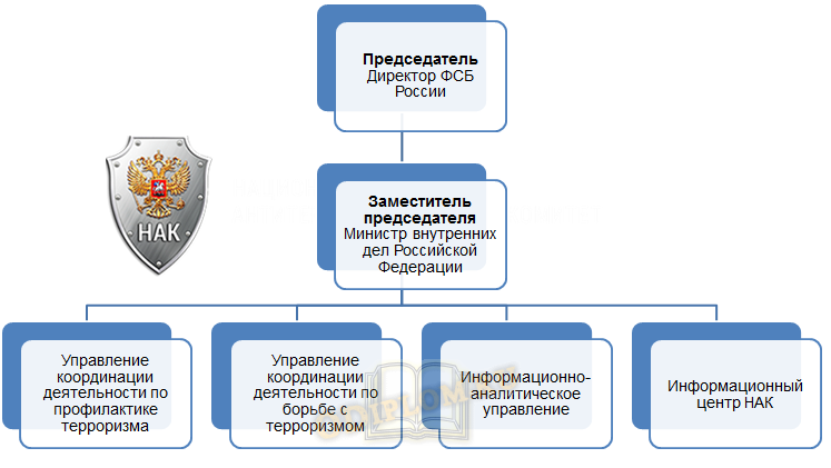 структура НАК