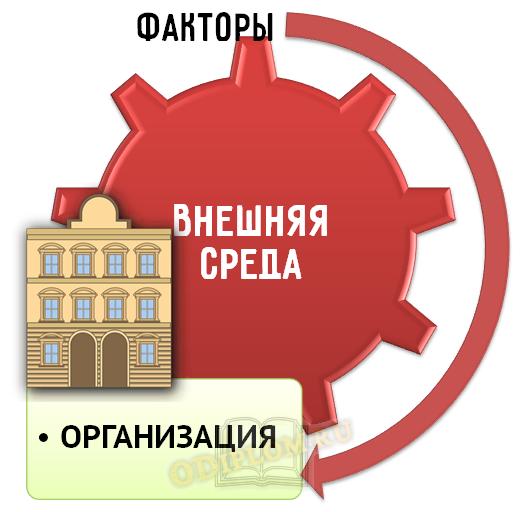 Внешняя среда организации