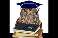 10 главных недостатков современной общеобразовательной школы